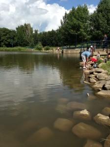 Crayfish Lacombe Park